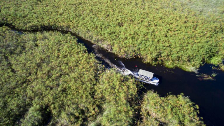 Discover the idyllic waterways of the Okavango Delta during your Nxabega stay