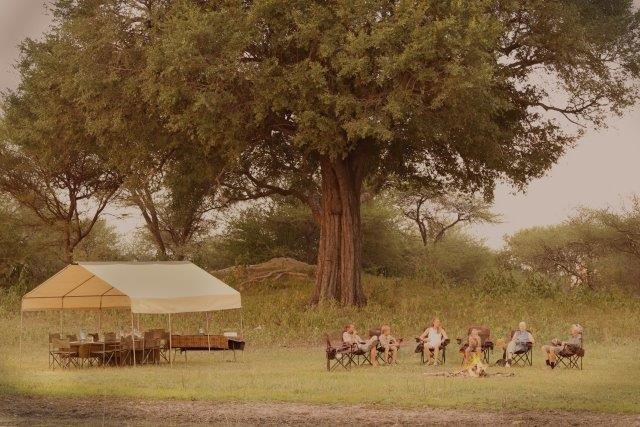 Letaka mobile safari camps bring guests up close to various animals