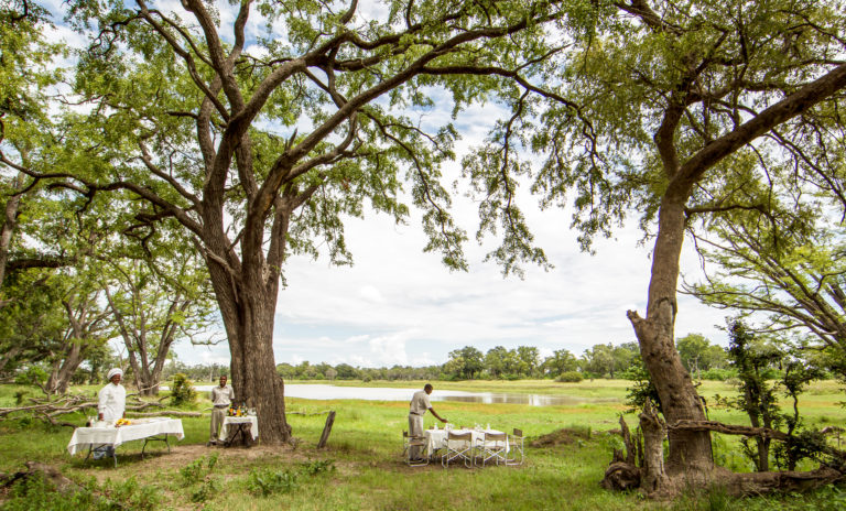 Breakfast is prepared under the trees by Camp Moremi staff member