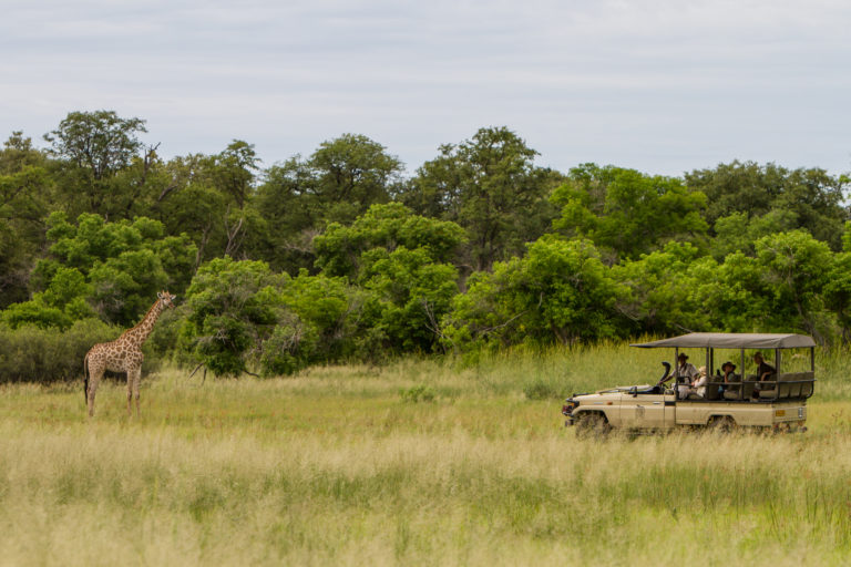 Camo Moremi offers a fantastic all -round game viewing experience