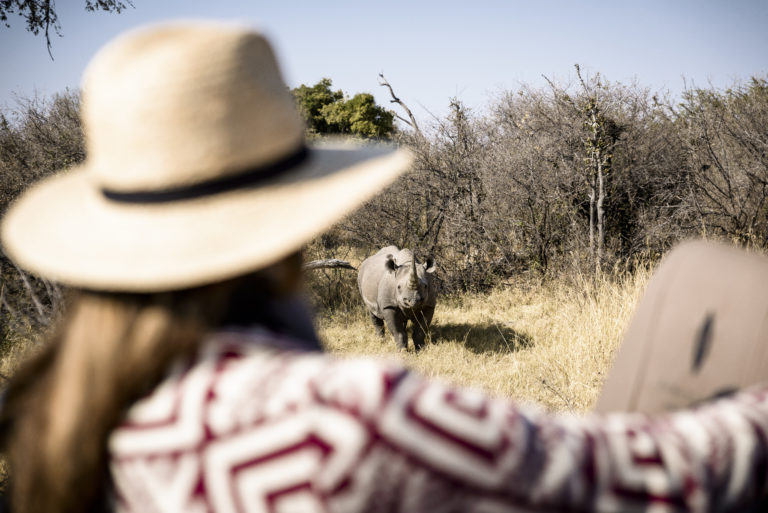 Endangered black rhino as see by guests at Chiefs Camp