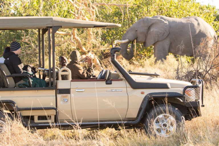 Elephant sighting on game drive from Rra Dinare lodge