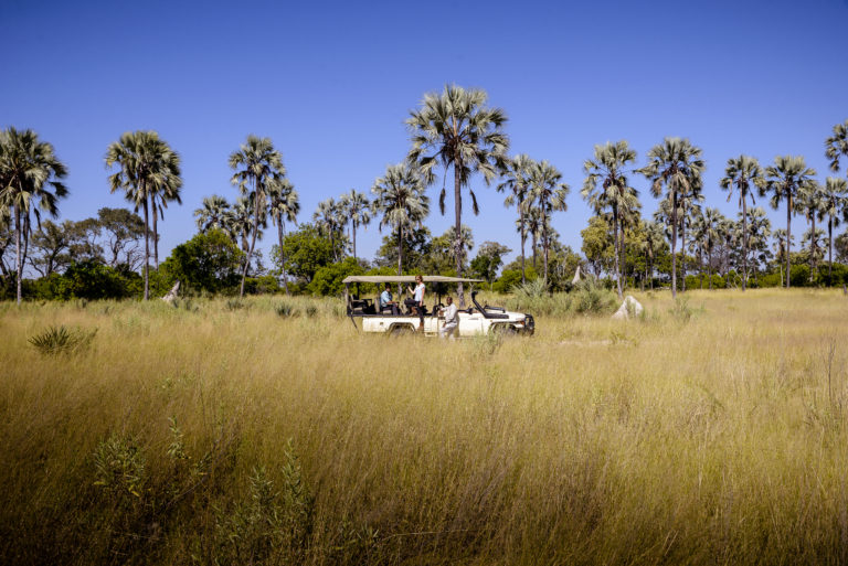 Game drive through the grasslands at Stanley's Camp