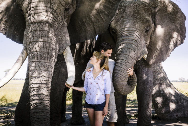 Stanley's Camp invites guests to walk with their habituated elephants
