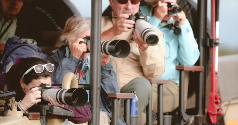 Cameras at the ready on a photographic safariwith Letaka Safaris