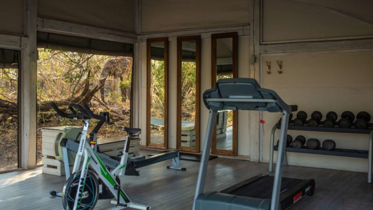 Abu camp has a gym facility on site for fitness loving guests