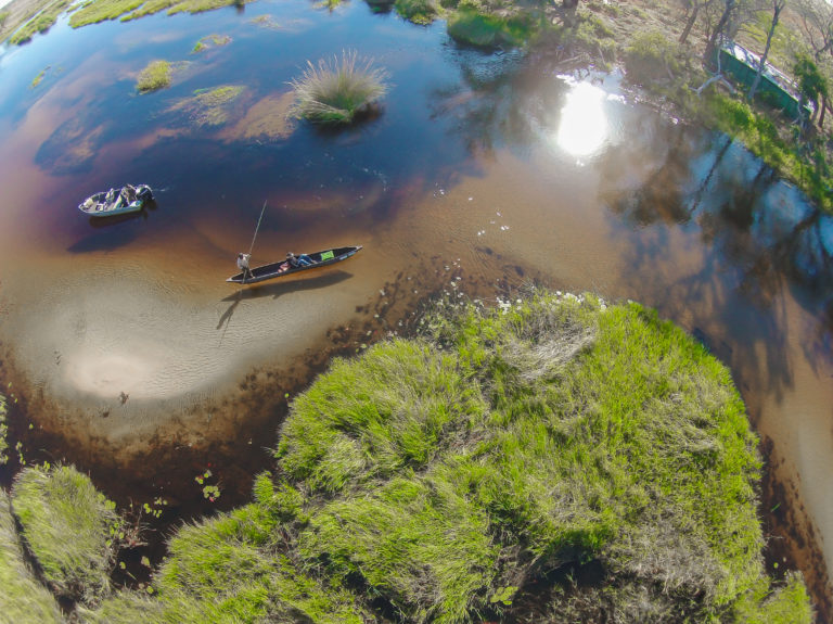 Scenic aerial view of boat and mokoro at Moremi