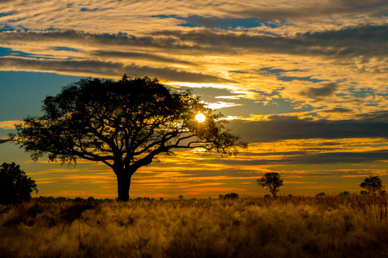Landscape by sunset from Kwando camp