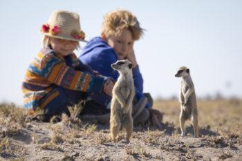 Kids meeting the meerkat colony close to Camp Kalahari