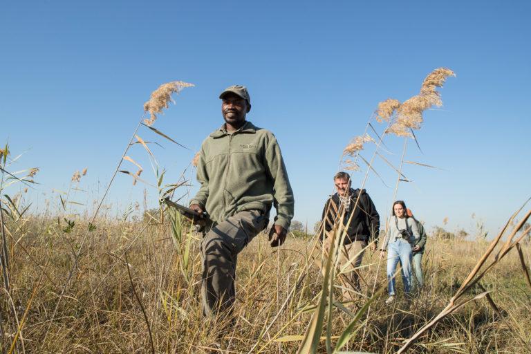Guided walking safaris are popular with guests at Setari
