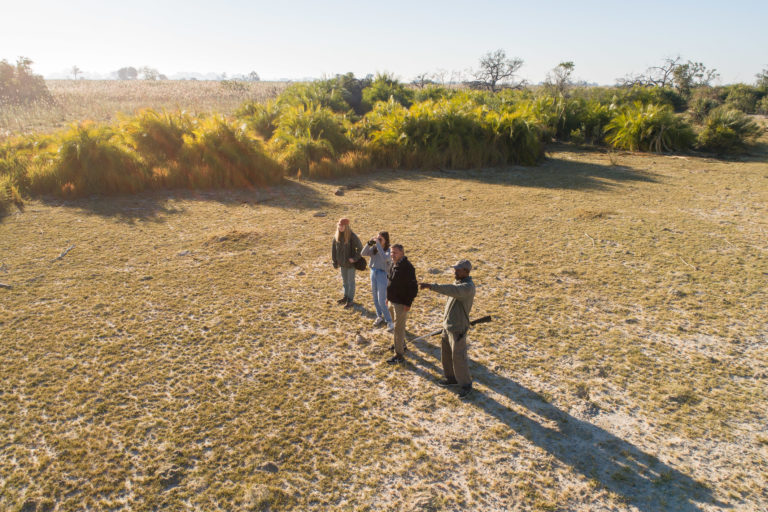 Aerial view of guests on guided walk from Setari Camp