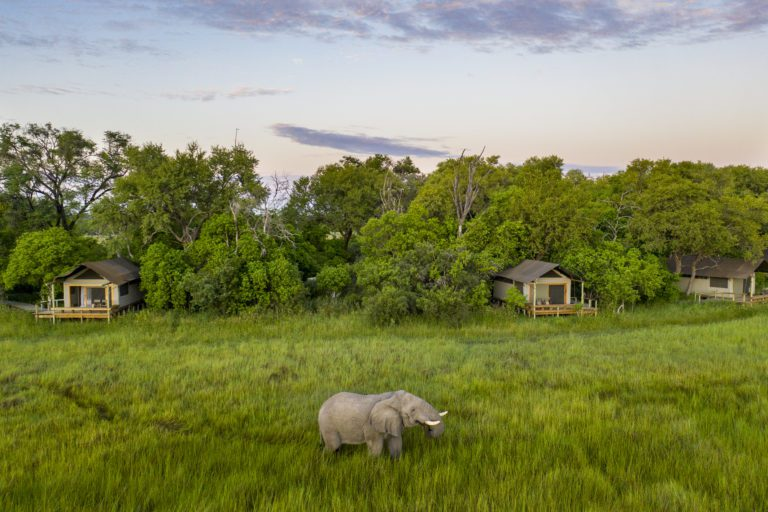 Little Sable elephant and guest tents aerial