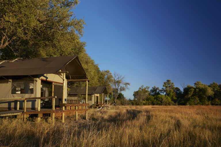 Little Sable Camp blends into the natural environment