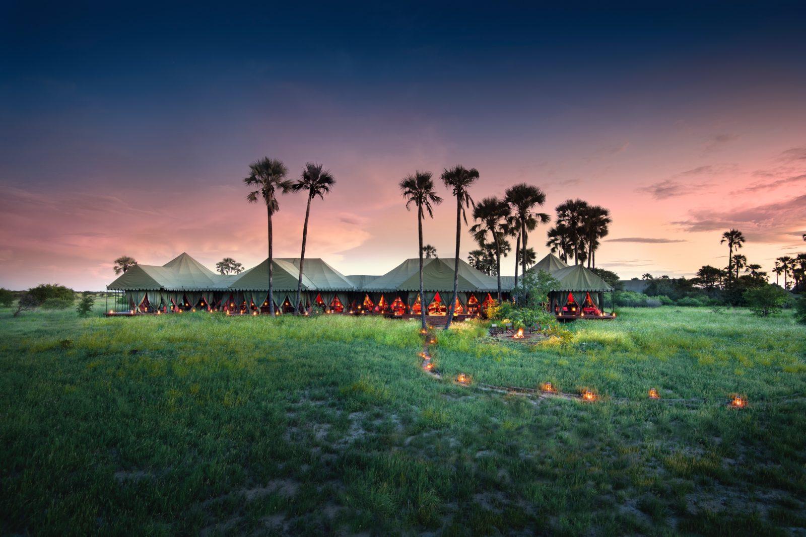 Jacks Camp luxury safari in the Kalahari