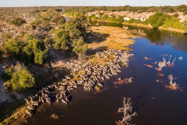 The Boteti River area is the transitional area between the Okavango Delta and the Kalahari Desert