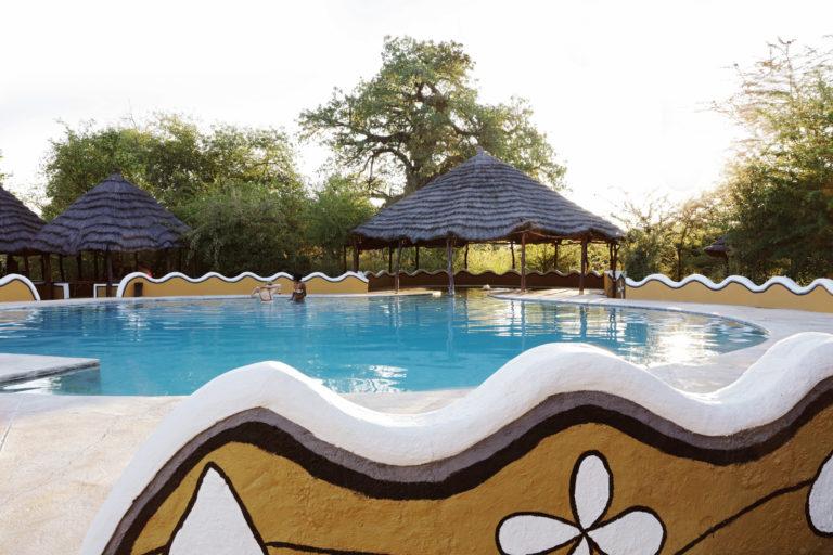 Planet Baobab - Swimming pool & hut