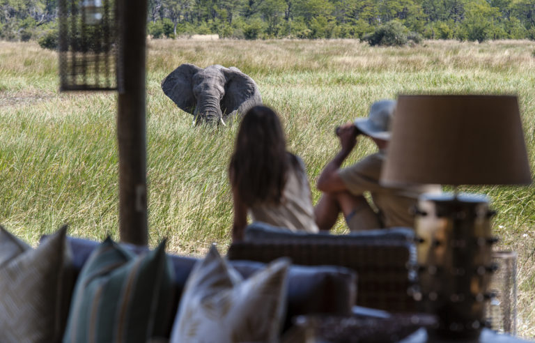 Sable Alley open air lounge guests viewing elephant close to lodge