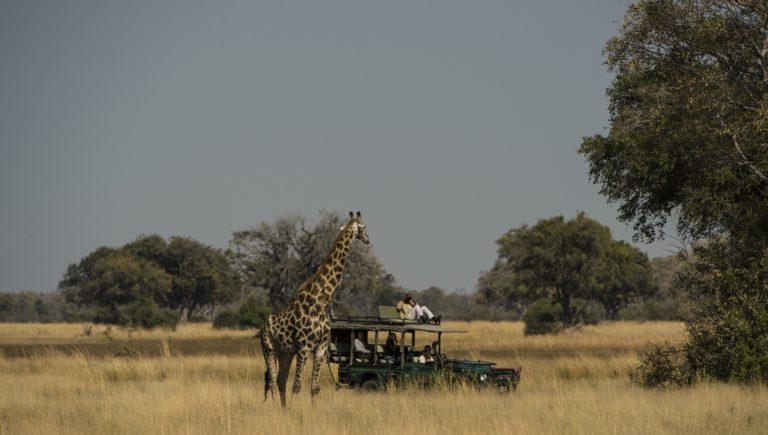 Okavango Mobile Expeditions game drive in northern Okavango