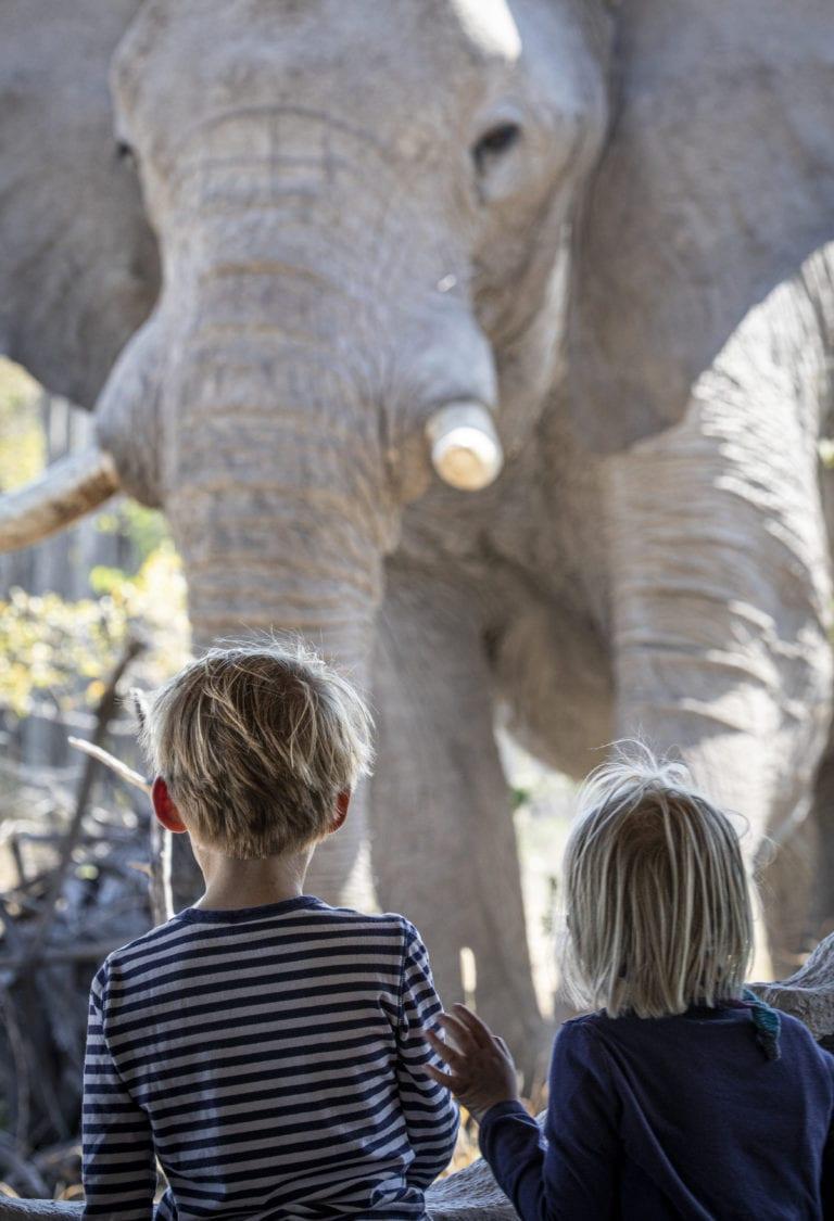 Elephant experience with kids at Camp Kalahari