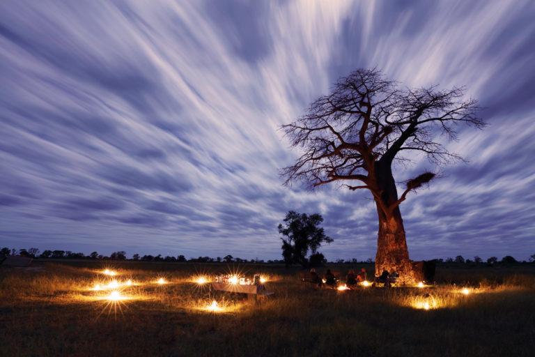 Baobab sky drinks by lantern light courtesy of Mapula lodge