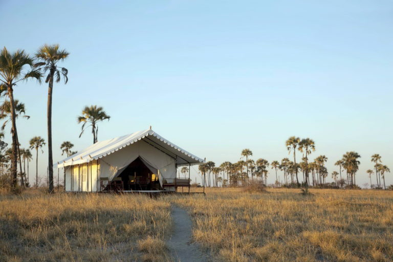 San Camp guest tent exterior against backdrop of Lala Palms