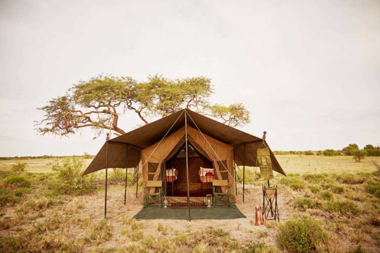 Guest tent exterior at Okavango Mobile Expeditions