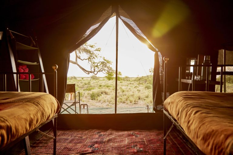 Okavango Mobile Expeditions guest tent interior twin with view