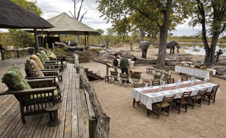 Elephants visit the dinner table at Hyena Pan