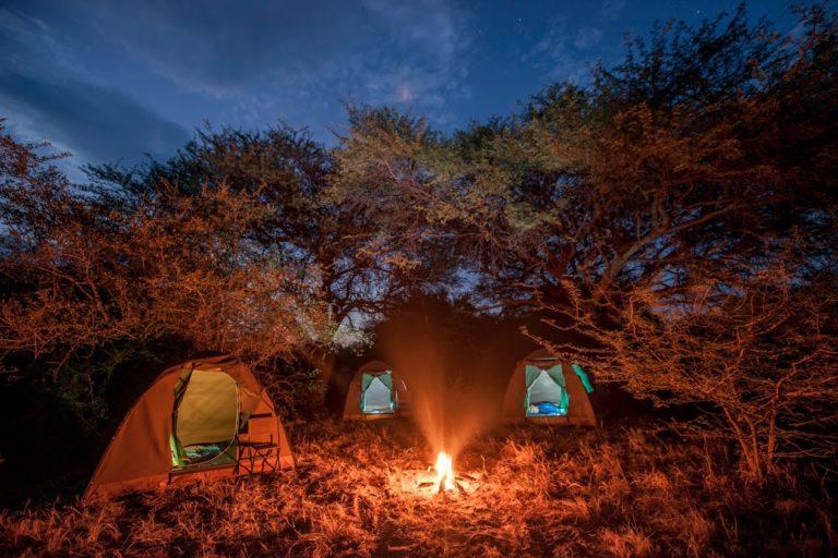 Bush Ways Safaris semi participation tents as seen at night time