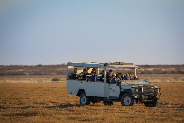 Custom built Bush Way vehicles offer excellent views for game viewing