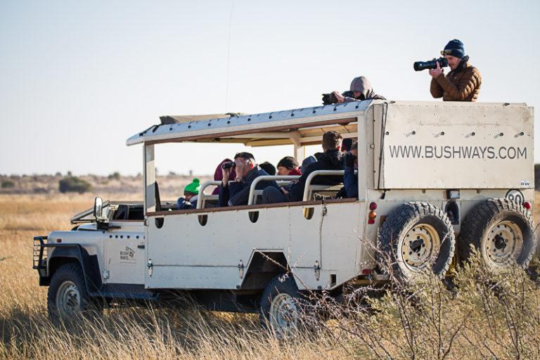 Bush Ways safaris have custom built game viewing vehicles