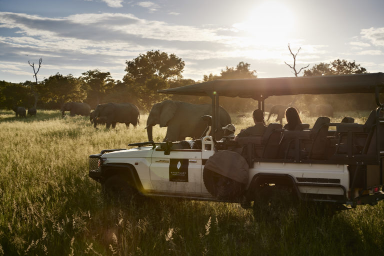 Chobe Chilwero guests enjoy an elephant sighting on afternoon game drive