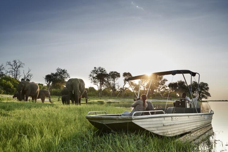 Boating Safari at Chobe Chilwero