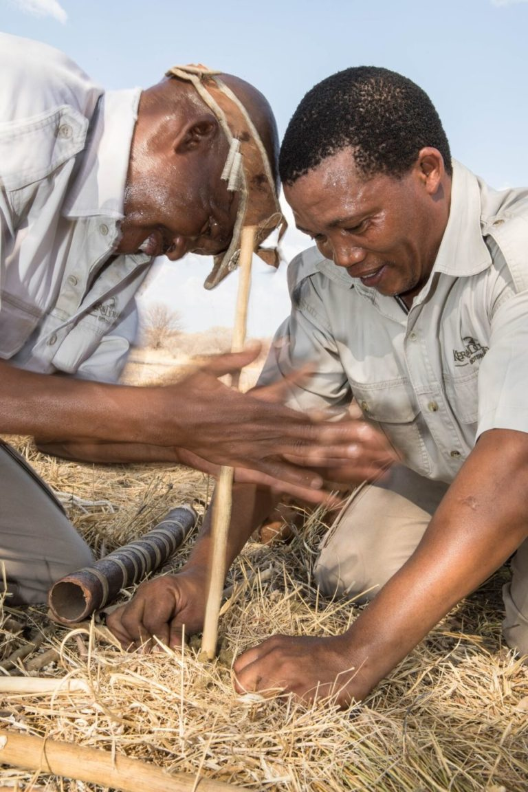 Making fire the bushman way on Bushman walk from Dinaka Camp