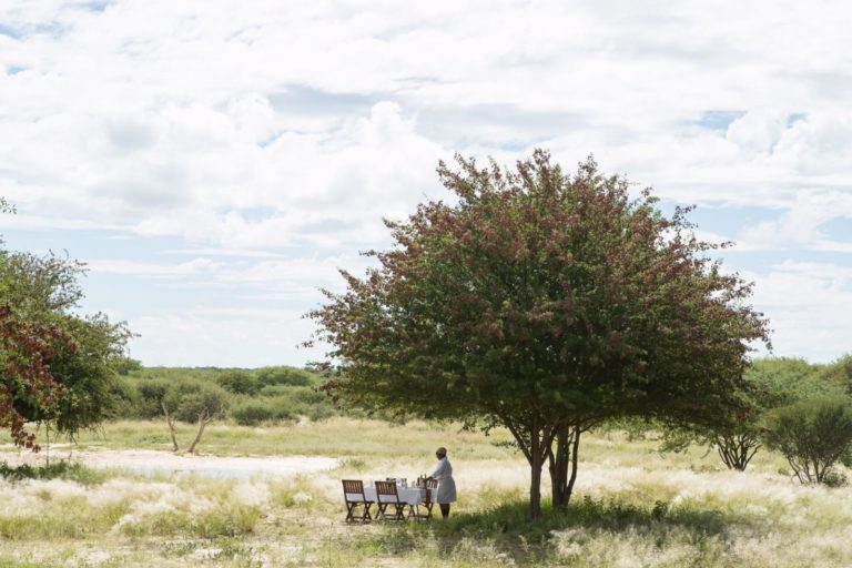 Lunch under a tree in Africa at Dinaka