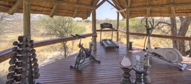 The thatched fully equipped gym facility at Feline Fields Lodge