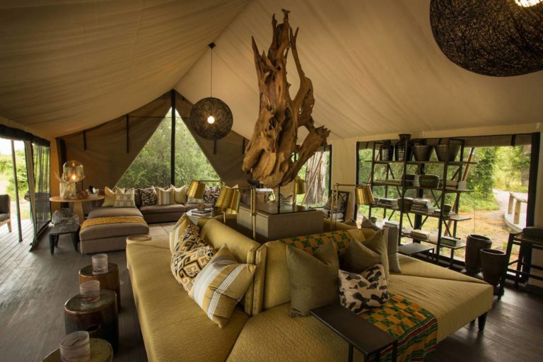 Natural decor of Gomoti Plains Camp lounge area