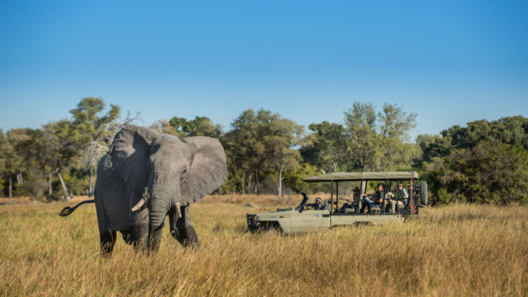 Safari vehicle on game drive from Hyena Pan