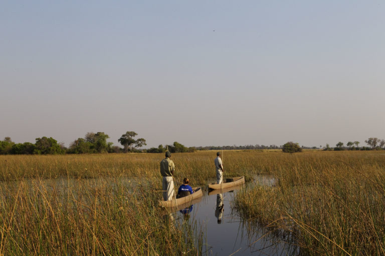 Tranquil Mokoro excursion through the delta waterways from Kanana Camp