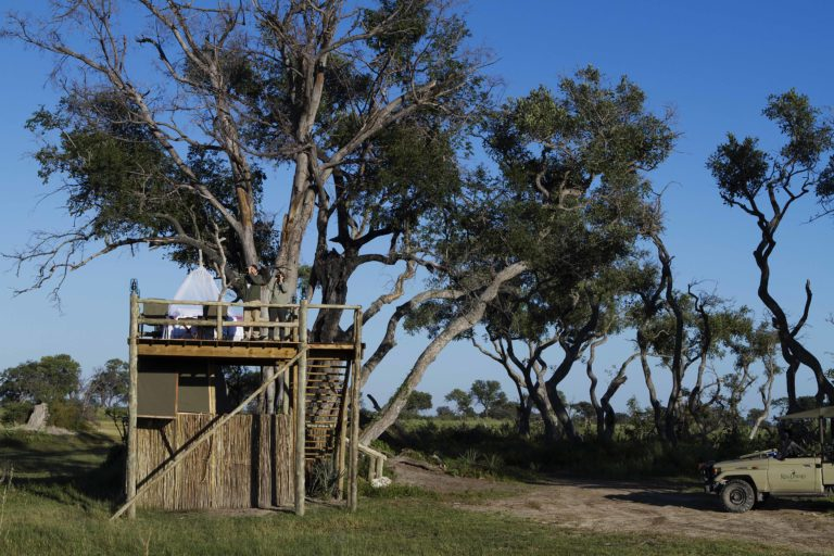 Day time view of the sleeping deck platform at Kanana Camp