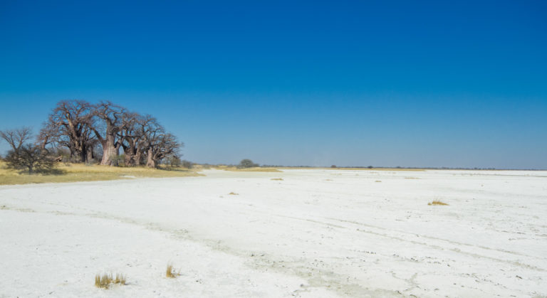 Nxai Pan excursion on the lunar like salt pans