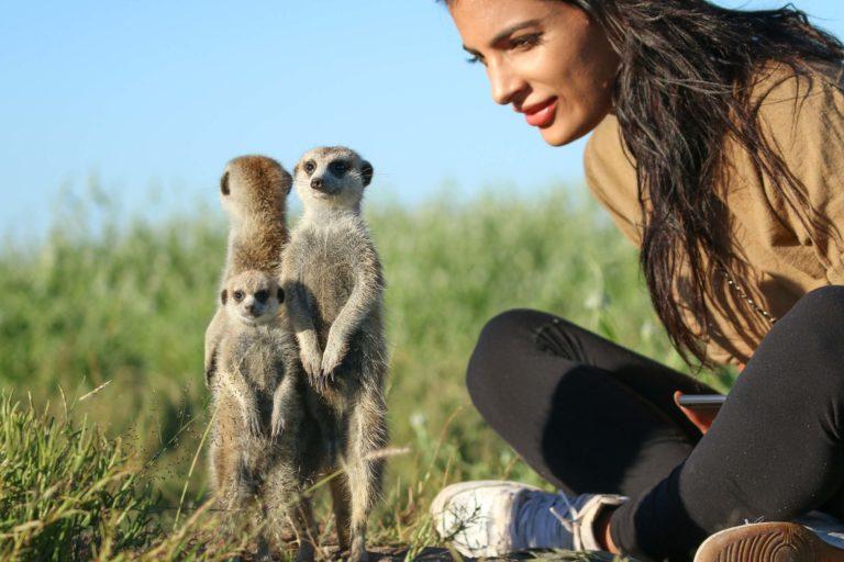 Guests thoroughly enjoy the semi habituated Meerkat experience at Camp Kalahari