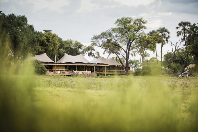 Distant view of the exquisite Mombo Camp from the floodplains