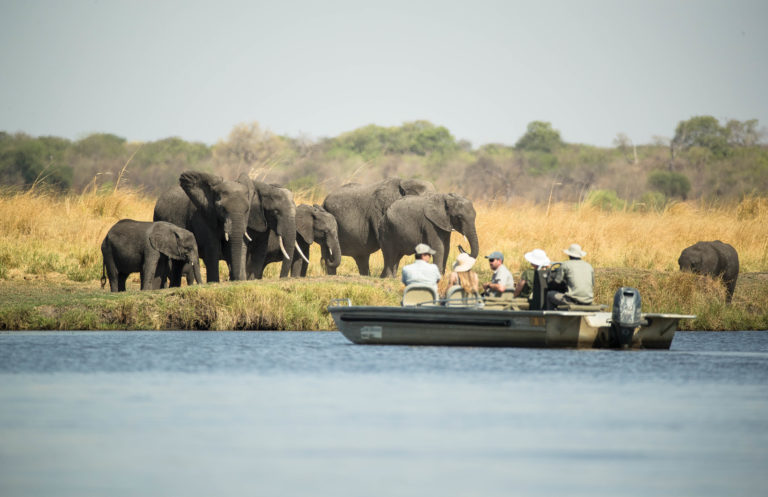 The Chobe river is one of the best places to visit in Botswana for elephants