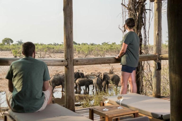 Guests enjoy elephant sighting from viewing deck at Savute Safari Lodge