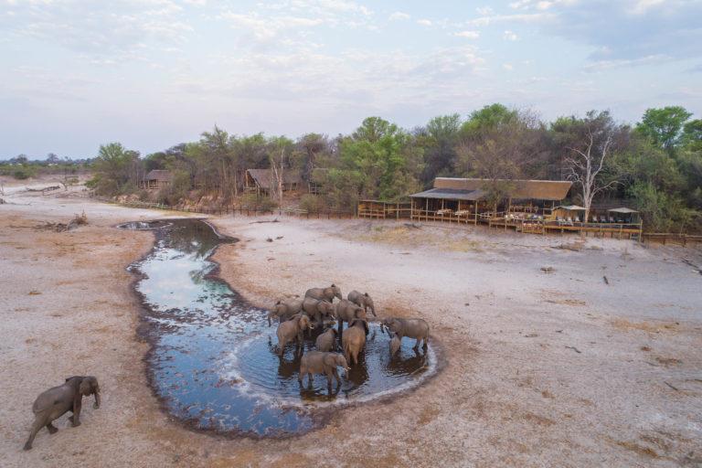 Elephant wallowing in the waterhole in front of Savute Lodge