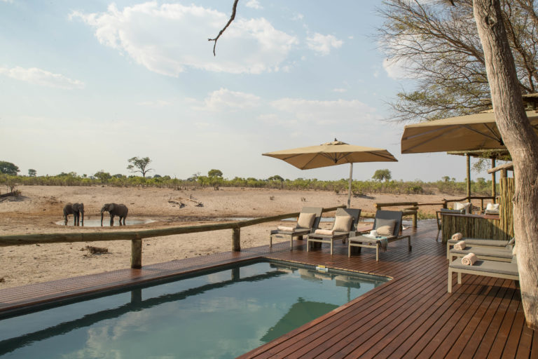 Distant elephant in grassland as seen from Savute's swimming pool