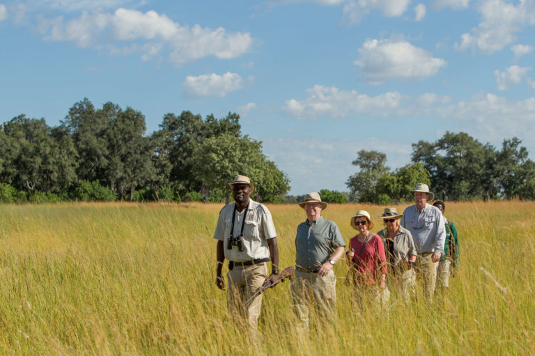 Guided walk through the wilderness hosted by Xugana Lodge