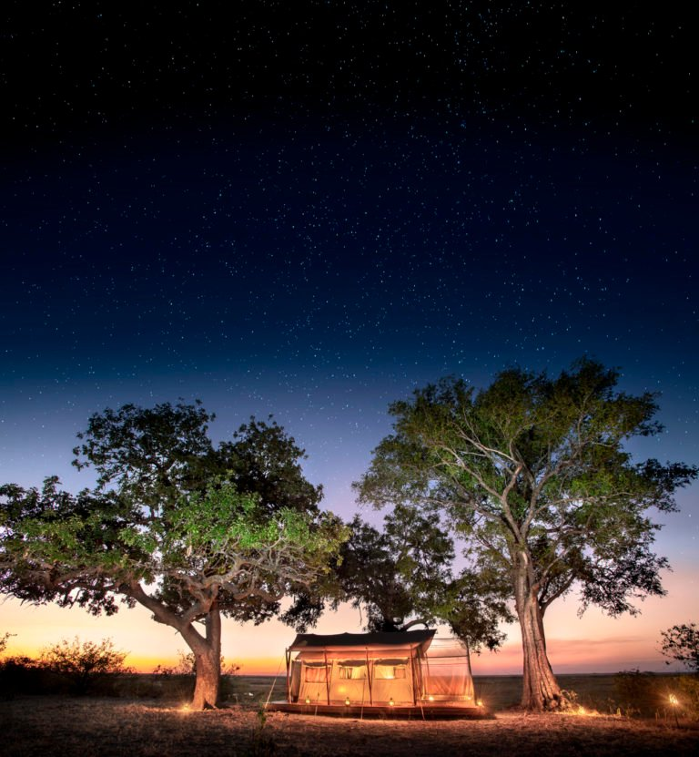 Linyanti Expeditions guest tent at night
