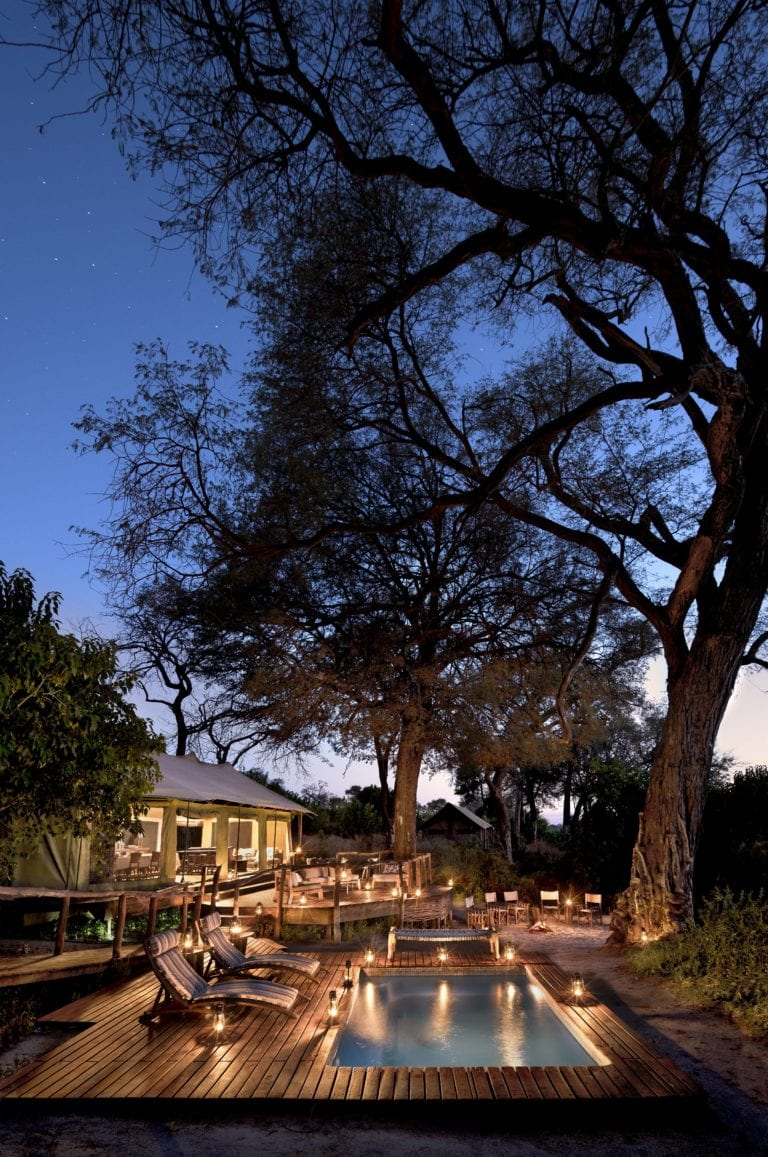 Majestic tree overhanging swimming pool evening view at Linyanti Ebony Camp